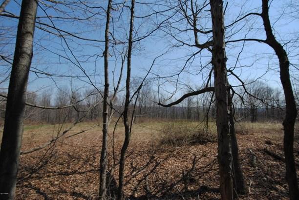 Raw Land,Rural - Waymart, PA (photo 3)