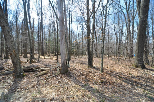 Approved Lot,Raw Land - Cresco, PA (photo 2)