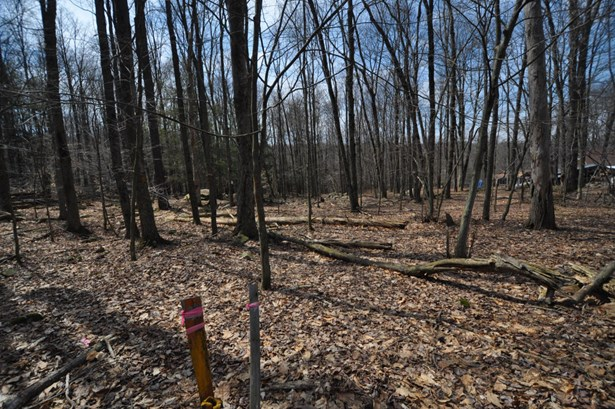 Approved Lot,Raw Land - Cresco, PA (photo 3)