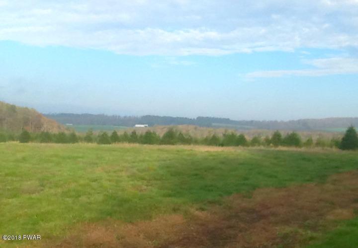 Raw Land - Thompson, PA (photo 1)