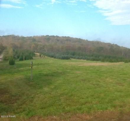 Raw Land - Thompson, PA (photo 2)