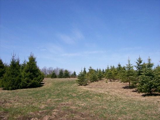 Raw Land - Thompson, PA (photo 3)