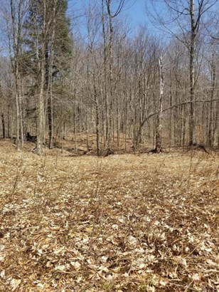 Approved Lot - Equinunk, PA (photo 3)