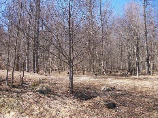 Approved Lot - Equinunk, PA (photo 4)