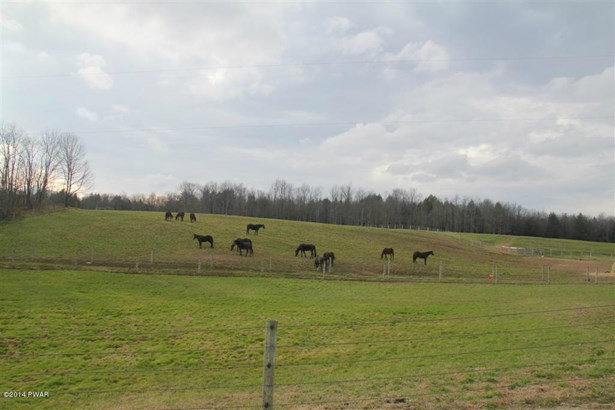 Farm - Waymart, PA (photo 3)