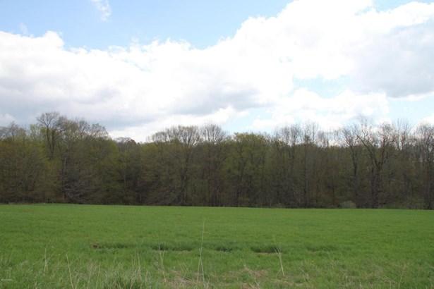 Improved Lot,Raw Land - Waymart, PA (photo 3)