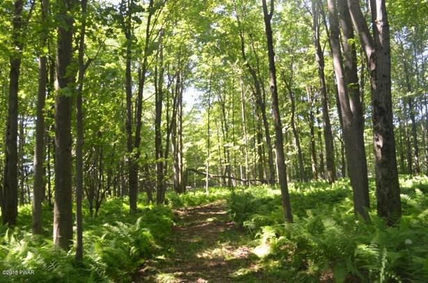 Raw Land - Union Dale, PA (photo 1)