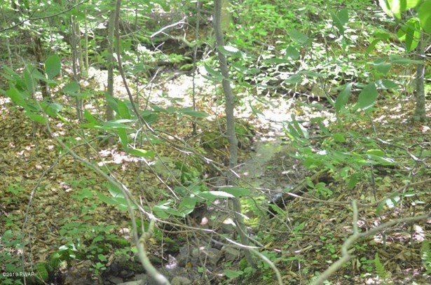 Raw Land - Union Dale, PA (photo 4)
