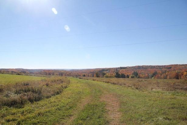 Split Level, Detached - Pleasant Mount, PA (photo 2)