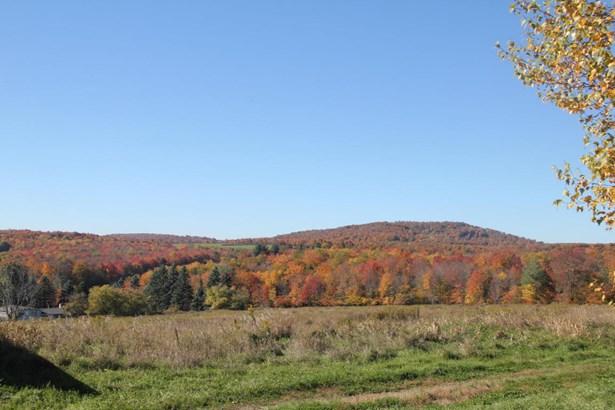 Split Level, Detached - Pleasant Mount, PA (photo 5)