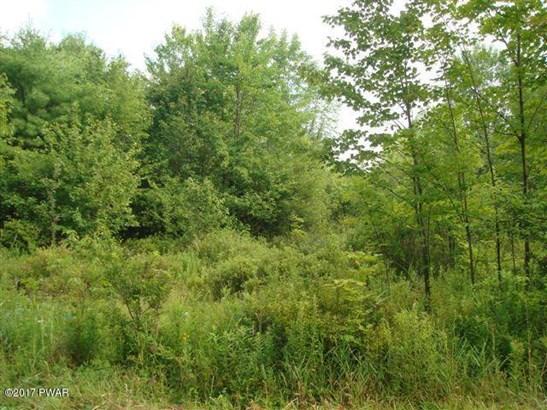 Raw Land - Waymart, PA (photo 1)