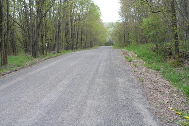 Raw Land - Waymart, PA (photo 5)