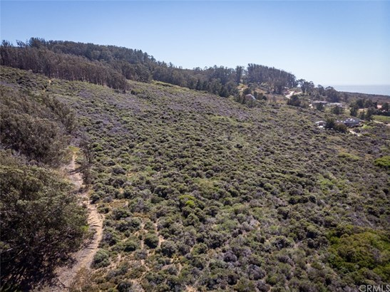 Land/Lot - Los Osos, CA (photo 4)