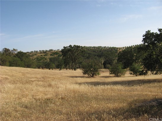 Land/Lot - Templeton, CA (photo 1)