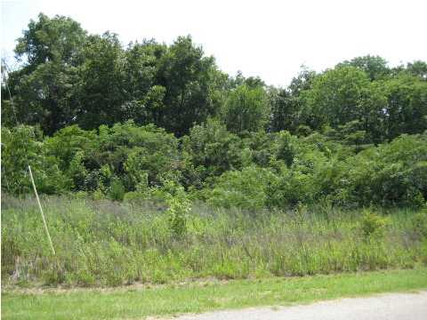 Residential Lot - Millbrook, AL (photo 3)