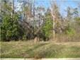 Residential Lot - Millbrook, AL (photo 1)