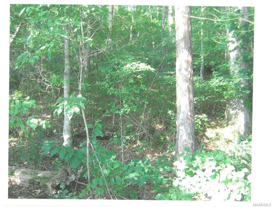 Residential Lot - Tallassee, AL (photo 5)