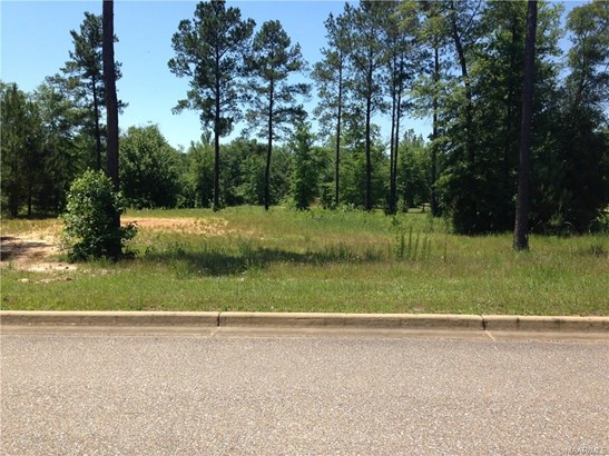 Residential Lot - Deatsville, AL (photo 1)