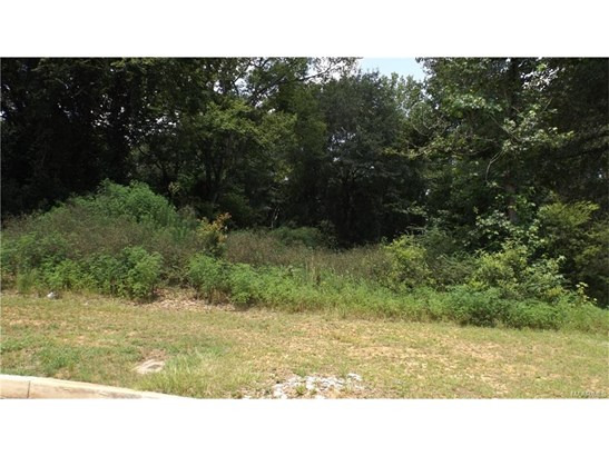 Residential Lot - Prattville, AL (photo 4)