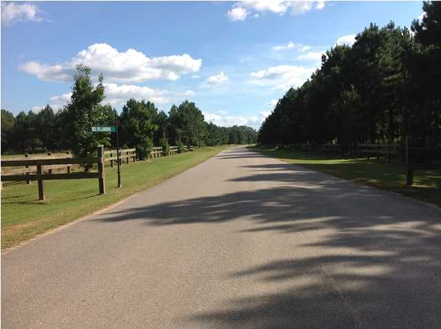 Residential Lot - Autaugaville, AL (photo 3)