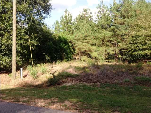 Residential Lot - Autaugaville, AL (photo 4)