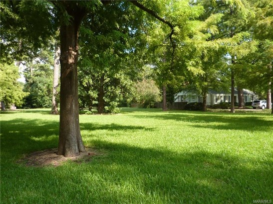 Residential Lot - Montgomery, AL (photo 4)