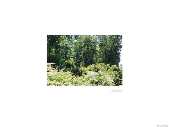 Residential Lot - Tallassee, AL (photo 4)