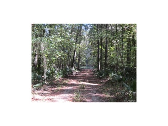 Acreage - Pike Road, AL (photo 1)