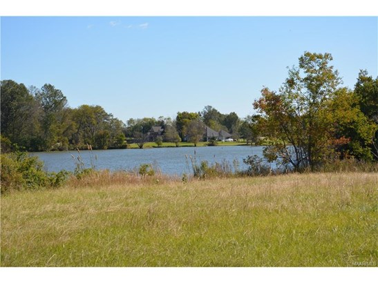 Acreage - Pike Road, AL (photo 2)