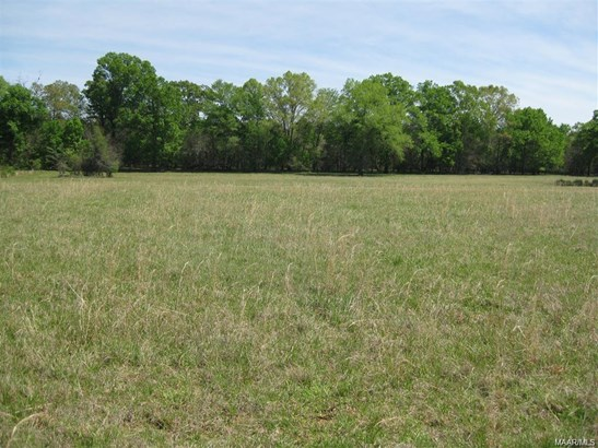 Acreage - Pike Road, AL (photo 4)