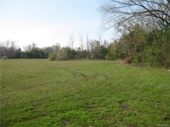 Residential Lot - Hope Hull, AL (photo 4)