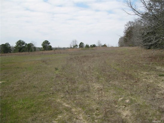 Acreage - Tuskegee, AL (photo 1)