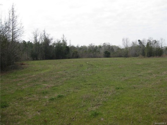 Acreage - Tuskegee, AL (photo 2)