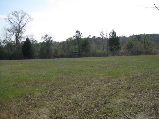 Acreage - Tuskegee, AL (photo 3)