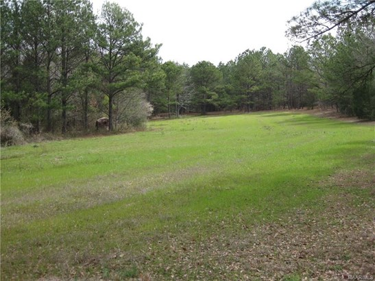 Acreage - Tuskegee, AL (photo 5)