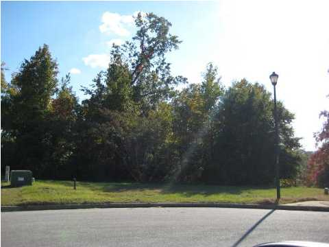 Residential Lot - Millbrook, AL (photo 2)