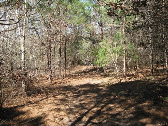 Residential Lot - Montgomery, AL (photo 3)