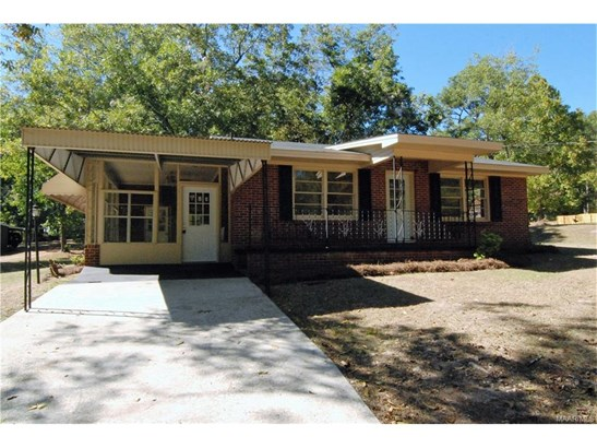 Single Family - Eclectic, AL (photo 1)