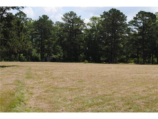 Residential Lot - Pike Road, AL (photo 1)