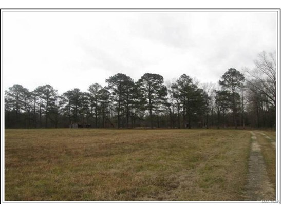 Residential Lot - Pike Road, AL (photo 3)