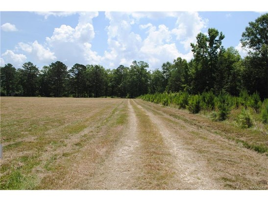 Residential Lot - Pike Road, AL (photo 5)