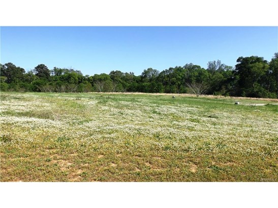Residential Lot - Prattville, AL (photo 2)