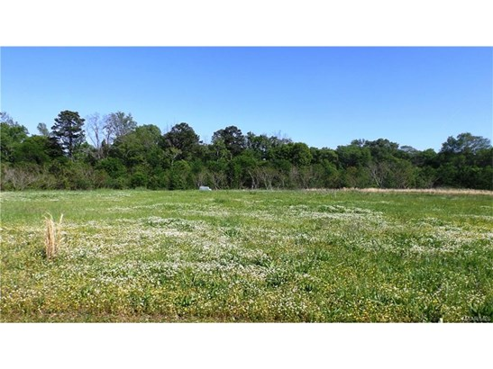 Residential Lot - Prattville, AL (photo 3)