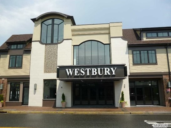 Rental Home, Apt In Bldg - Westbury, NY (photo 1)