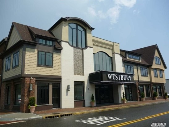 Rental Home, Apt In Bldg - Westbury, NY (photo 3)