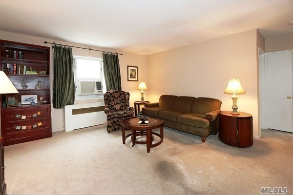 Co-Op, Residential - Bellerose Manor, NY (photo 4)