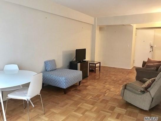Residential, Condo - Manhattan, NY (photo 4)