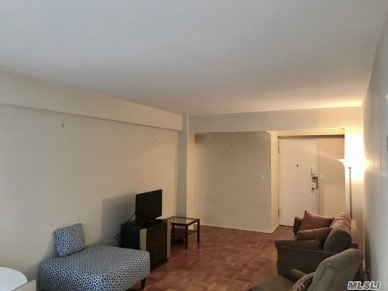Residential, Condo - Manhattan, NY (photo 5)