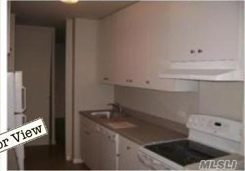 Rental Home, Apt In Bldg - Elmhurst, NY (photo 3)