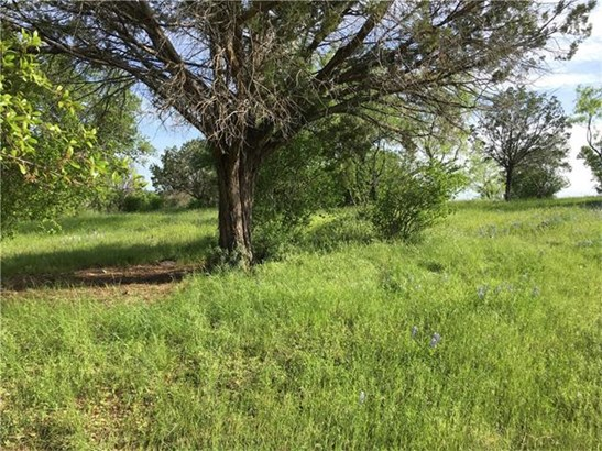 Single Lot - Horseshoe Bay, TX (photo 3)